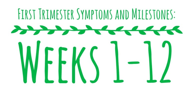 First Trimester Cover Photo